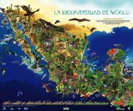 mexico biodiversidad ecologia cambio climatico