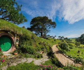 hobbiton-movie-set-tour-new-zealand-9