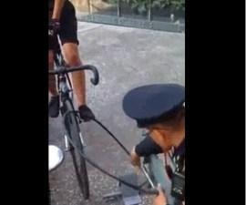 araña bici