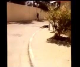 ataque tunez