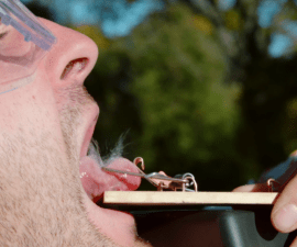 Ratonera y lengua