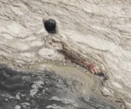 brazo agua rio 2016