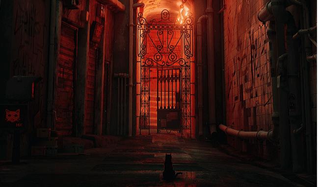 hk-videojuego-gato-portada
