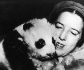 ruth-harkness-panda