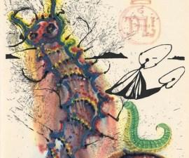 Salvador Dalí ilustración de gusano