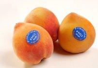 fruta-codigo