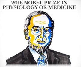 premio-nobel-2016-medicina
