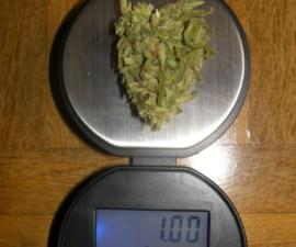 gramo-de-marihuana
