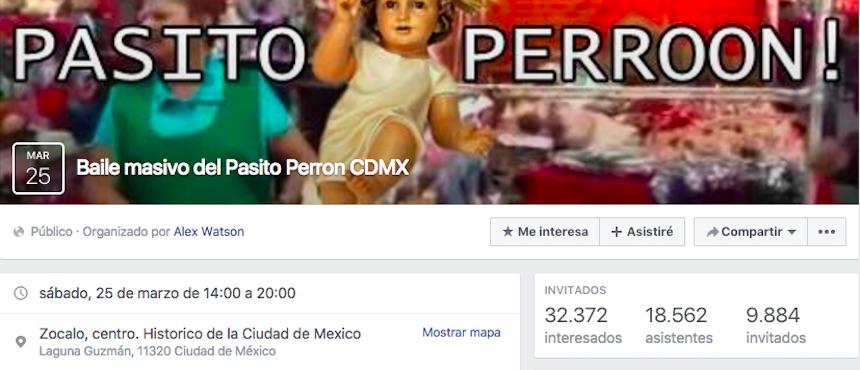 Pasito Perrón - Facebook