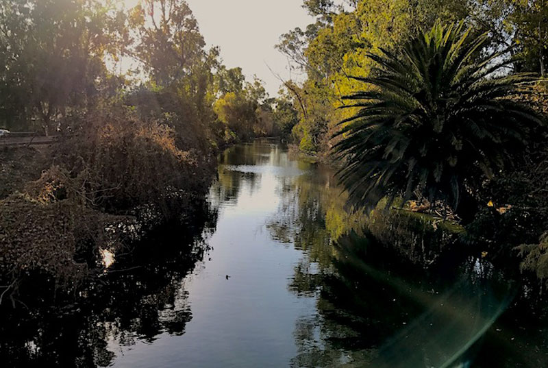 Paisaje Canal Nacional