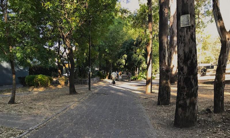 Canal Nacional Camino