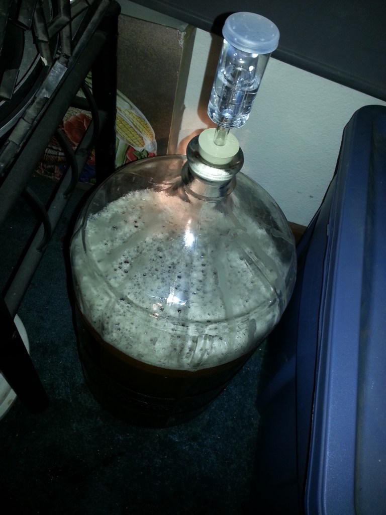 my first batch of beer in the fermenter