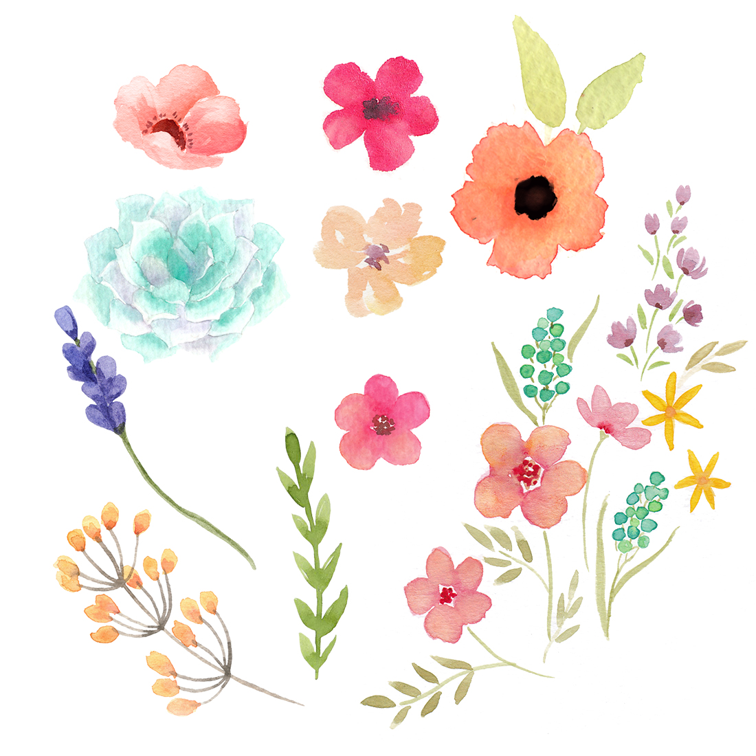 Flourish And Florals Freehand Calligraphy And Watercolor Workshop
