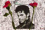 Prince Fans Show Appreciation