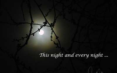 """""""THIS NIGHT AND EVERY NIGHT"""""""