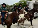 Broward Sheriff Mounted Police