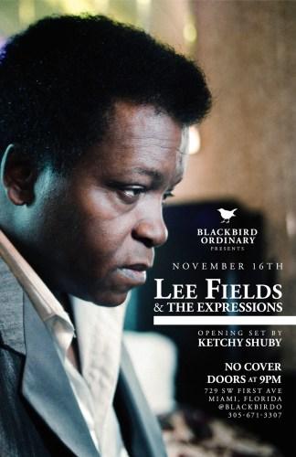 blackbird_leefields_web