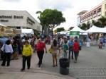 southmiamiartfestival110213-059