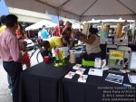 downtownsummerluaublockparty062014-006