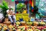 Mango-Festival-35