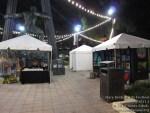 marybrickell artsfestival091814-023