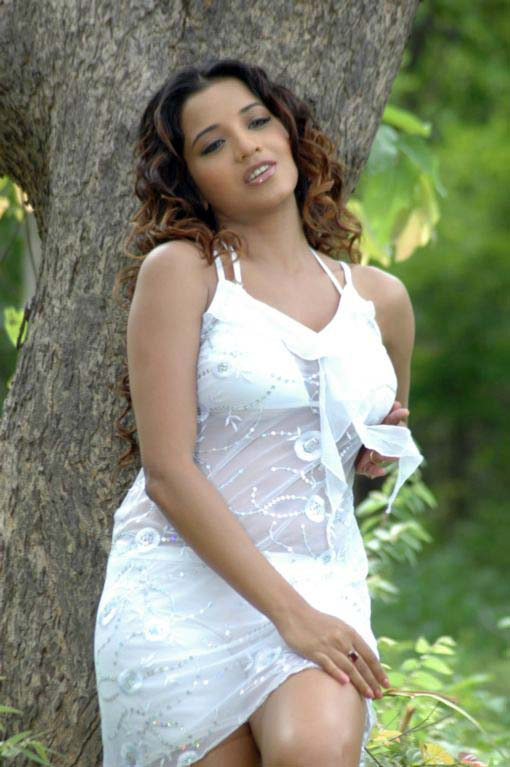south indian glamour actress monalisa bikini stills 10 Monalisa hot photos