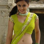 South Indian actress Navel show