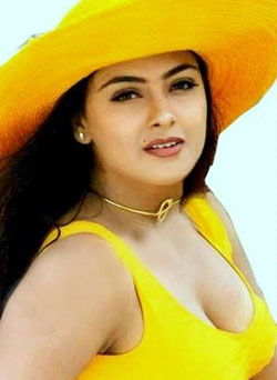 simrn Simran goes to Telugu small screen