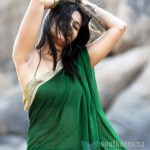 hot-actress-anushka-shetty-saree-blouse-navel-spicy-stills_11