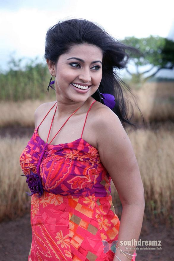 sneha stills 1 Sneha to pair up with Nagarjuna