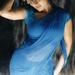 Tamil Actresses in Saree