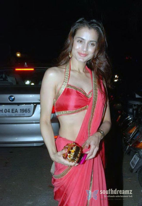 Amisha Patel in Red Saree 01 Amisha Patel Hot in Red Saree