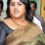 Hurt Vanitha to take solace in politics?