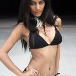 Model Poonam Pandey to go nude if India wins ICC Cricket World Cup