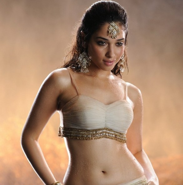 tamanna hot in badrinath 586x590 Tamanna hot stills in Badrinath with Allu Arjun