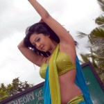 aindrita-ray-in-parijatha-movie-hot-stills-5