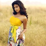 Amala Paul's Bollywood dreams