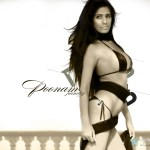 Its a no bra day for Poonam Pandey