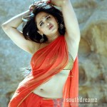 anushka-shetty-sexy-saree-naval-stills-36