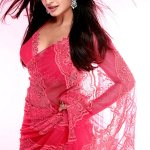 vimala-raman-Deadly-Temptress-In-Pink-Saree-stills