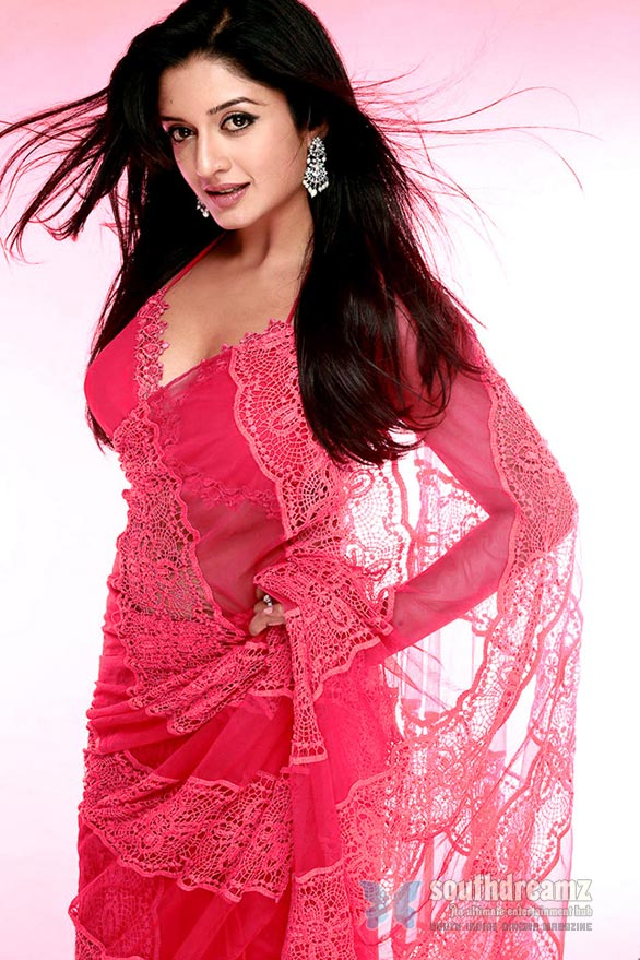 vimala raman Deadly Temptress In Pink Saree stills Vimala Raman Hot Photos