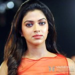 amala_paul_latest_hot_photos_nayak_audio_release