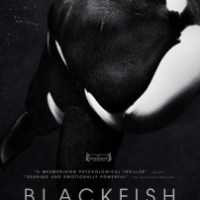 Blackfish: the Science Behind the Movie