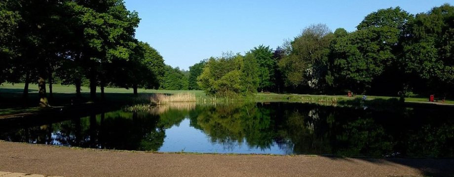 South Leeds Roundup: Parks, poaching and pre-fabs