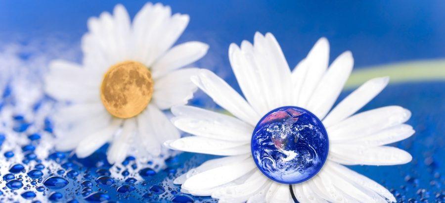 Comment réduire ses déchets au quotidien ?