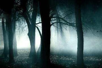 Tendencias paranormales sobre tu signo zodiacal.