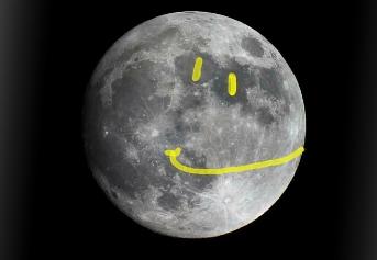 Moon Life Handbook
