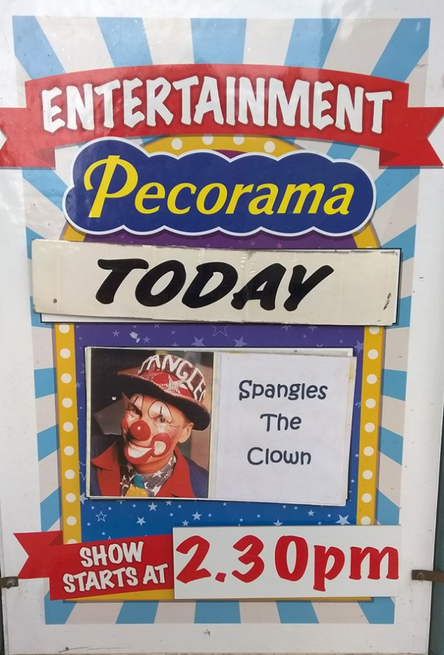 Spangles performs at Pecorama pleasure Gardens
