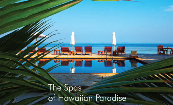 The Spas of Hawaiian Paradise By Ed Rampell