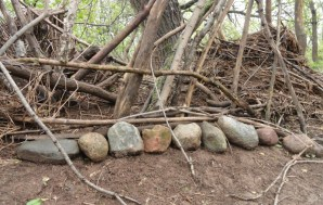 Sticks and Stones… (The Story of Negative Comments)